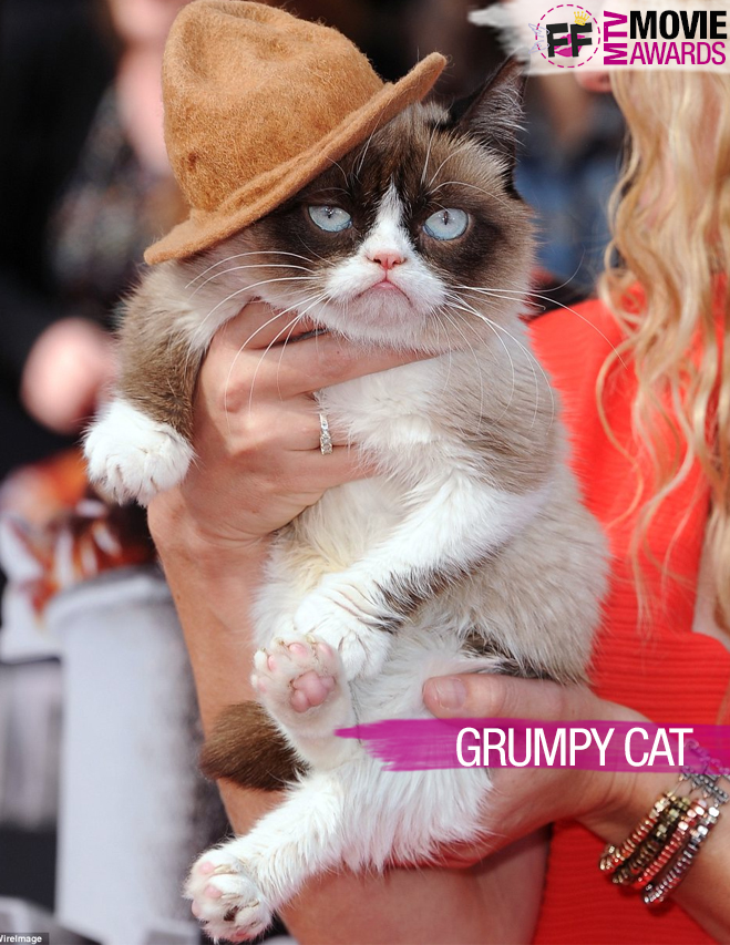 MTV MOVIE AWARDS Grumpy Cat