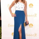 Emmy Awards 2014 Looks Anna Gunn