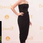 Emmy Awards 2014 Looks Jessica Pare