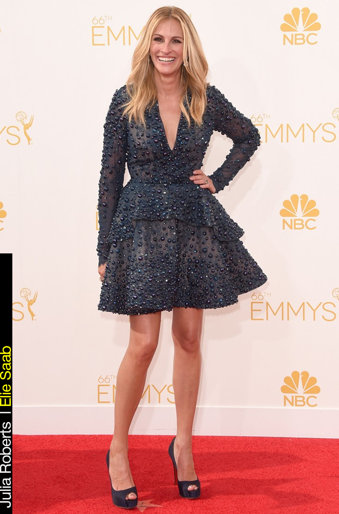 Emmy Awards 2014 Looks Julia Robets