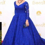 Emmy Awards 2014 Looks Mayim Bialik