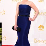 Emmy Awards 2014 Looks Melissa Rauch