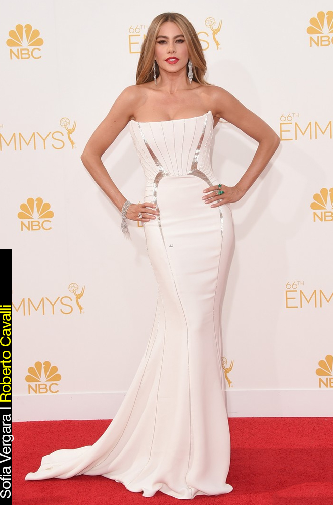 Emmy Awards 2014 Looks Sofia Vergara