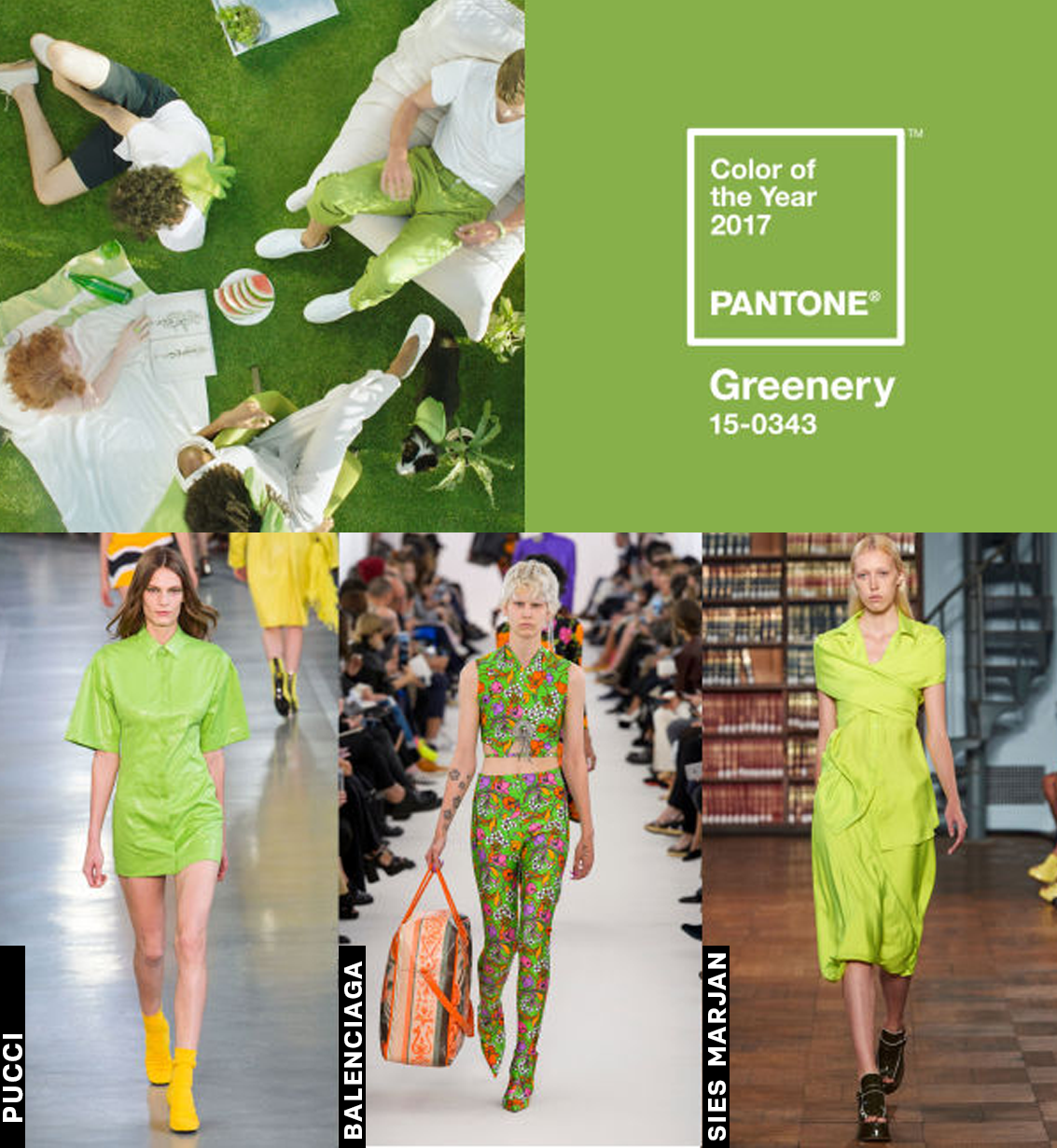 greenery-cor-do-ano-pantone-2